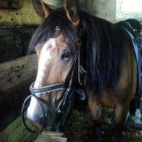 """Photo taken at Конный клуб """"Horse travel"""" by Mikhail V. on 6/10/2014"""