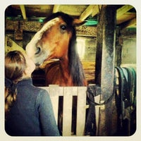 """Photo taken at Конный клуб """"Horse travel"""" by Mikhail V. on 5/8/2014"""