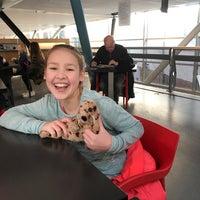 Photo taken at Nieuwe Veste by Diana H. on 2/5/2018
