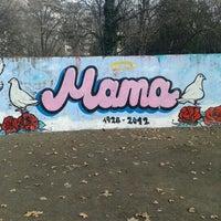 3/12/2013 tarihinde Hanák J.ziyaretçi tarafından Városmajor'de çekilen fotoğraf