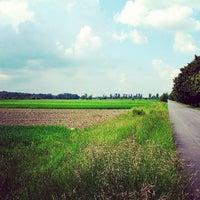 Photo taken at Rolki (Wilanów - Powsin) by A. on 6/7/2013