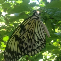 Photo taken at Texas Discovery Gardens by Branden W. on 6/9/2013