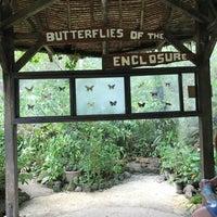 ... Photo Taken At Butterfly Garden, Habitat Bohol By Lady  ليدي ❤. On ...