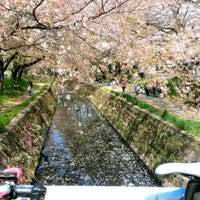 Photo taken at 千本桜 by tecchan0101 on 4/16/2017