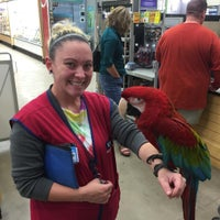 Photo taken at Lowe's Home Improvement by Adventure P. on 10/15/2015