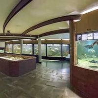 Photo taken at Acquario by Isola d. on 10/17/2015