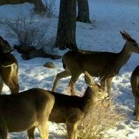 Photo taken at Running Y Ranch Resort by Dennis J. on 1/20/2013