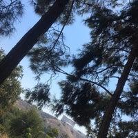 9/24/2018에 Büşra Y.님이 Eskihisar Parkı에서 찍은 사진