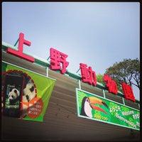 Photo taken at Ueno Zoo by Koji M. on 4/29/2013