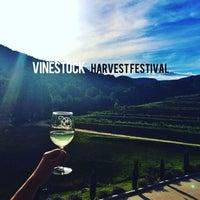 Photo taken at Victoria Valley Vineyards by Ryan J. on 9/26/2015