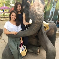Photo taken at Elephant Kraal Pavilion by Nao M. on 1/2/2017