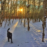 Photo taken at Mill Woods Dog Park by Andy H. on 1/20/2015