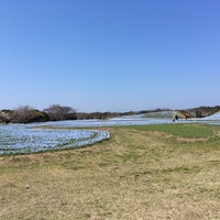 Photo taken at Uminonakamichi Seaside Park by 主任 on 4/4/2017