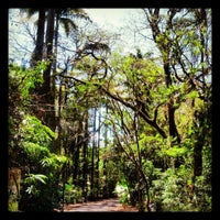 Photo taken at Bosque dos Jequitibás by Paulo M. on 9/23/2012