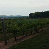 Photo taken at Vynecrest Vineyard & Winery by Dave A. on 6/8/2014