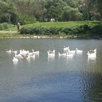 6/17/2013 tarihinde Anıl A.ziyaretçi tarafından Bahçeşehir Park Gölet'de çekilen fotoğraf