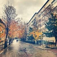 11/26/2013 tarihinde 🇹🇷H.K K.ziyaretçi tarafından Veteriner Fakültesi'de çekilen fotoğraf