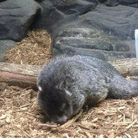 Photo taken at Charlotte Nature Museum by Ron P. on 8/9/2014