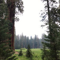 Photo taken at Giant Trees Meadow by Viet D. on 5/20/2018