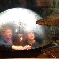 Photo taken at L.L.Bean by Jen R. on 7/1/2013