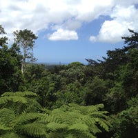 Photo taken at El Yunque National Forest by Carly S. on 4/13/2013