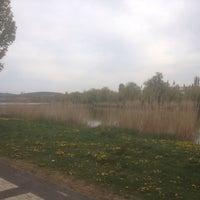 Photo taken at Tópark by Márton K. on 4/26/2015