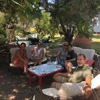 8/31/2018 tarihinde Gulden Y.ziyaretçi tarafından Tarla Alacatı'de çekilen fotoğraf