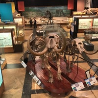 Photo taken at Exhibit Museum of Natural History by Peter S. on 3/8/2017