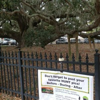 Photo taken at Safety Harbor Big Tree by Lorraine S. on 11/12/2017