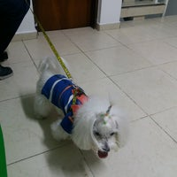 Photo taken at AMA Veterinária by Sonia D. on 8/5/2016