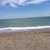 Foto diambil di Playa del parque natural de la desembocadura del Guadalhorce oleh Alejandro D. pada 7/6/2014