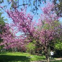 4/12/2013 tarihinde ⭐Gizem ⭐.ziyaretçi tarafından Özgürlük Parkı'de çekilen fotoğraf