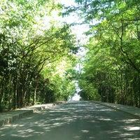 Foto scattata a İTÜ Ağaçlı Yol da Tasdemir A. il 7/2/2013