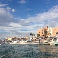 11/16/2013에 Geno R.님이 Marina Cabo San Lucas에서 찍은 사진