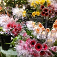 Photo taken at Aoyama Flower Market by Jun Y. on 1/17/2014