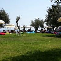 8/17/2013 tarihinde Tarkan T.ziyaretçi tarafından Safir Beach'de çekilen fotoğraf