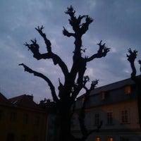 Photo taken at Žerotínovo náměstí by Karel Č. on 5/19/2016