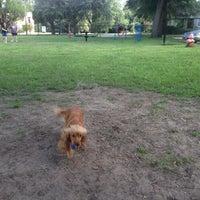 Photo taken at My Dog's Diggin' Dog Park by James B. on 7/9/2016