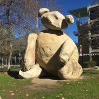 Photo taken at Bear Statue by Anita on 1/26/2016