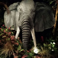 Photo taken at Rainforest Cafe by Lisa on 9/17/2013