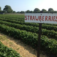 Photo taken at Cat And Fiddle Strawberry Fields by Paolo B. on 7/7/2013