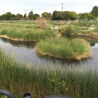 Photo taken at Dominguez Gap Wetlands by Long Beach Huntington on 12/18/2014