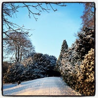 Photo taken at Darley Park by Colin M. on 1/22/2013