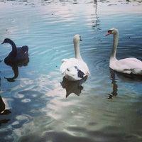 Photo prise au Via Port Gölü par Dilek E. le5/11/2013