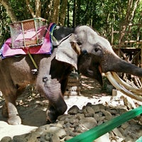 Photo taken at Langkawi Elephant Adventures by Anas A. on 2/2/2015