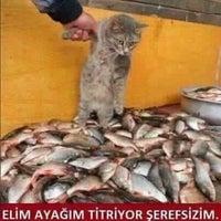 Photo taken at YUKSEL PAMUK TEKSTİL by Mehmet Y. on 1/30/2016