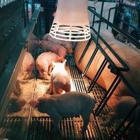 Photo taken at Swine Barn by Matt H. on 8/28/2017