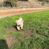 Photo taken at St. Mary's Park Dog Run by Lana C. on 12/2/2017