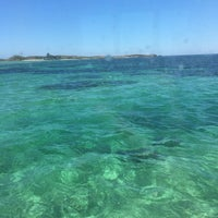 Photo taken at Penguin Island Ferry by Saghah M. on 2/14/2017