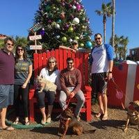 Photo taken at Neptune Beach, FL by Marla R. on 12/24/2016